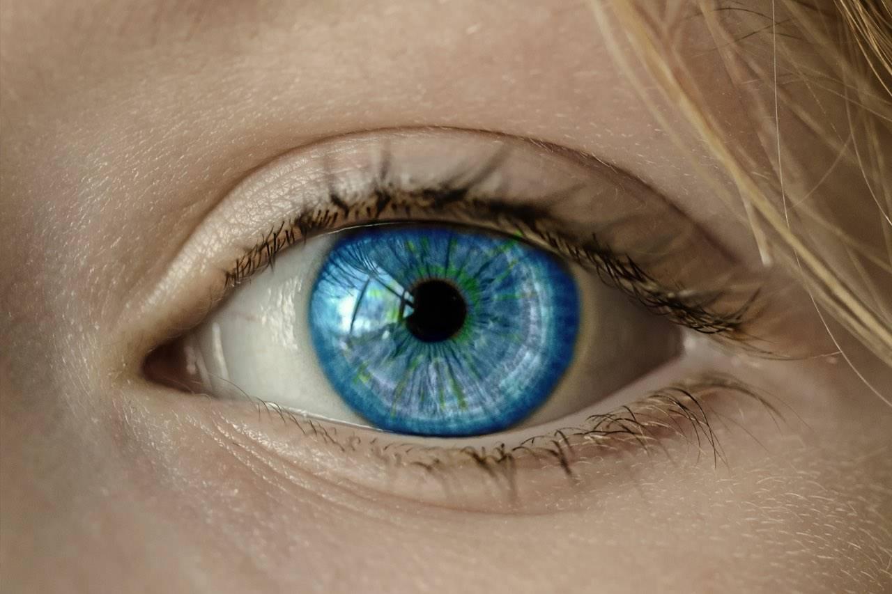 Close-up of Beautiful Blue Eye