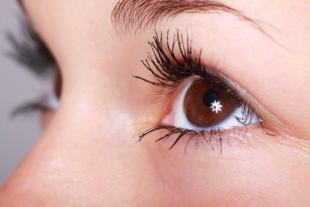 eye brown twinkle close up