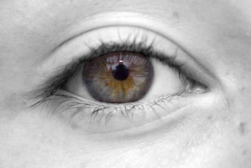 picture of eye - optometrist - eye exam - Breman & Logan, OH
