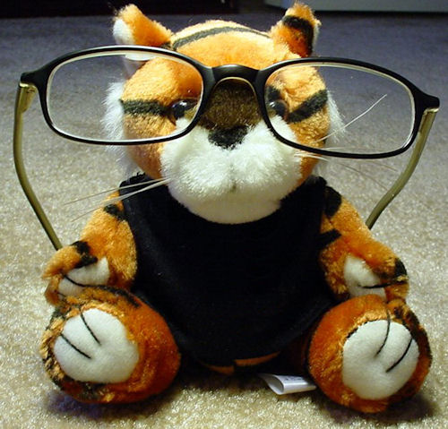 Stuffed animal with glasses