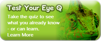 kids vision test your eye q