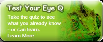 callout eyeq2